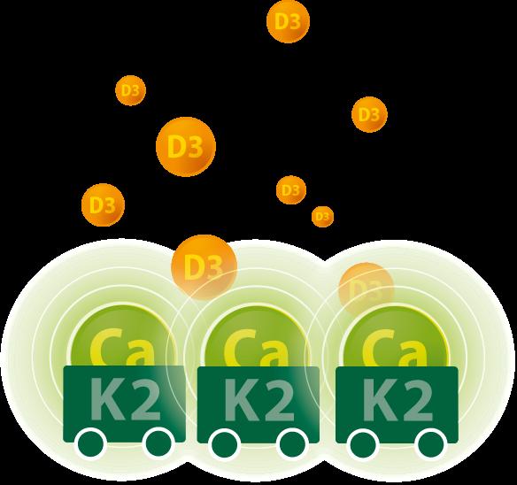 Vitamine K2 & D3