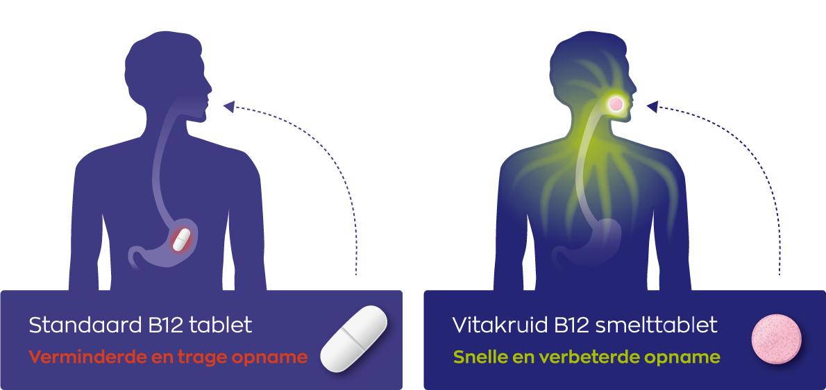 Infographic B12 opname