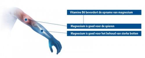 Werking Vitamine B6 & Magnesium