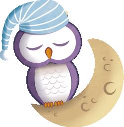 Uil slapen